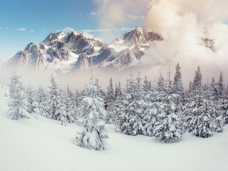 冬の神秘的な風景の雄大な山々。