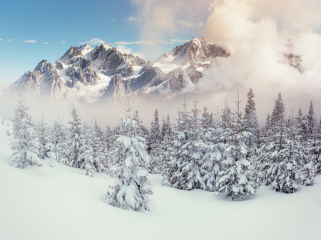 Mysterious landscape majestic mountains in winter.