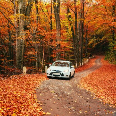 car on a forest path. Beautiful road in mountains. Carpathian Stock Photo