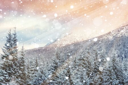 slopes: magical winter landscape, background with some soft highlights Stock Photo