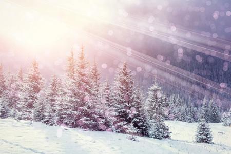 Magisch winterlandschap, achtergrond met wat zachte hoogtepunten a