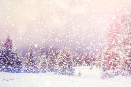 magical winter landscape, background with some soft highlights a