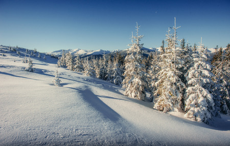 Fantastic winter landscape in the mountains of Ukraine. In antic Stock Photo