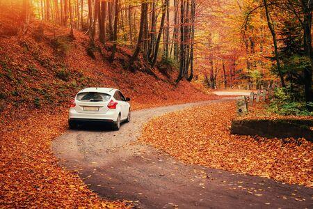 forest path: car on a forest path. Autumn Landscape. Ukraine Europe Stock Photo