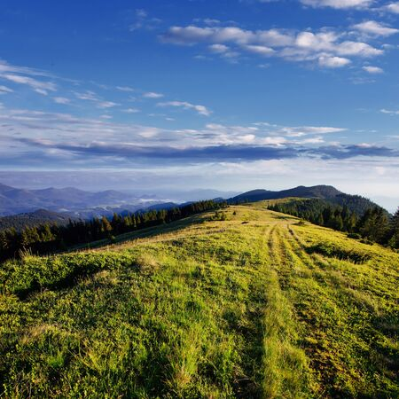 Beautiful summer mountain landscape. Dramatic scene. Carpathian, Stock Photo