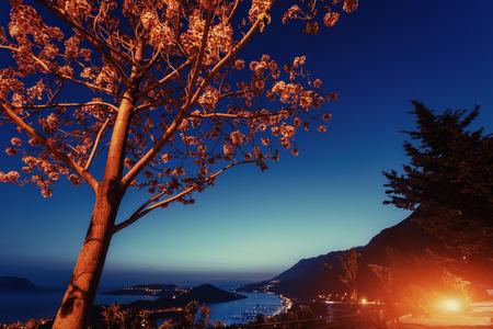 Paisaje hermoso lámparas y rocas a lo largo de la carretera costera a lo largo de la hermosa costa al atardecer.