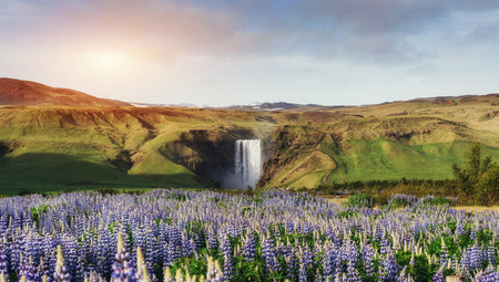 Great waterfall Skogafoss in south of Iceland near the town of Skogar