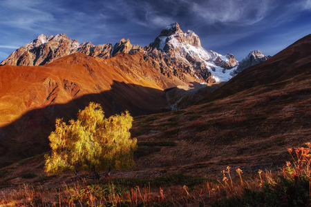 Autumn landscape and snowy mountain peaks.