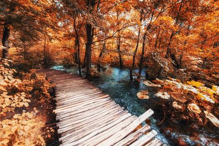 The famous Plitvice Lakes National Park, Croatia, Europe. Bright