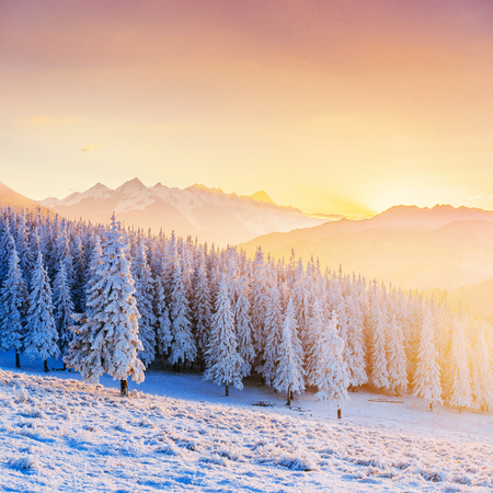 Colorful sunset over the mountain ranges in the national park Stock Photo