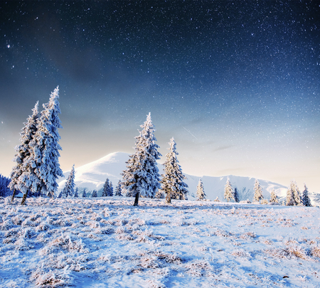 starry sky in winter snowy night. fantastic milky way Stock Photo
