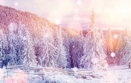 Mysterious winter landscape majestic mountains