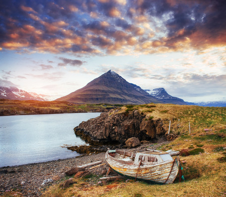 The picturesque landscapes of forests and mountains  Iceland.