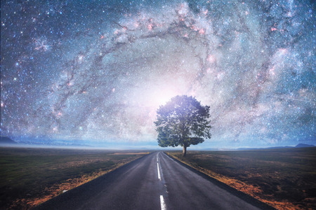 Asphalt road and lonely tree under a starry night sky