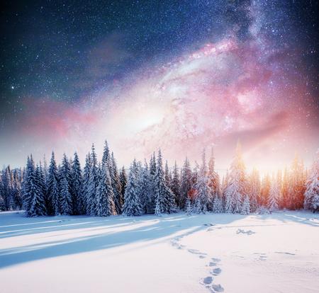 starry sky in winter snowy night. fantastic milky way in the New