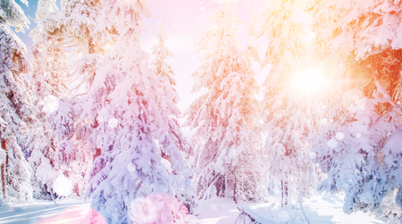 Mysterious winter landscape majestic mountains in