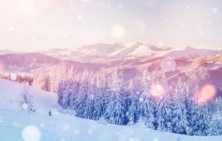 Geheimzinnig winterlandschap majestueuze bergen in