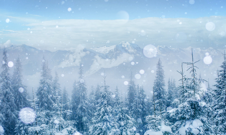 Mysterious winter landscape majestic mountains in the