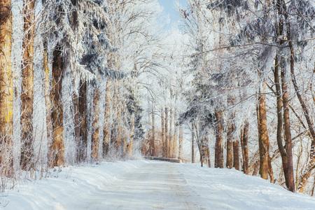 the winter road. Dramatic scene. Carpathian Ukraine Europe Stock Photo