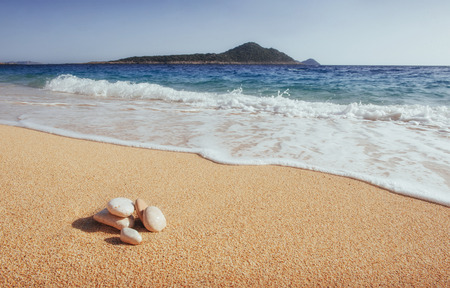 海沿岸の素晴らしい景色を、黄色い砂浜と青い水で楽しめます。 写真素材
