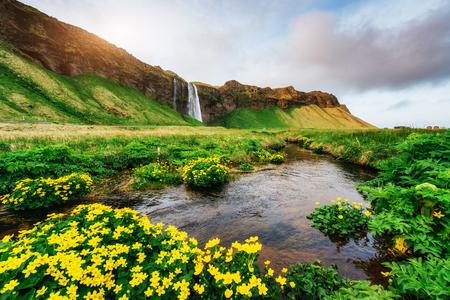 Seljalandfoss waterfall at sunset. Bridge over the river. Fantastic nature. Iceland