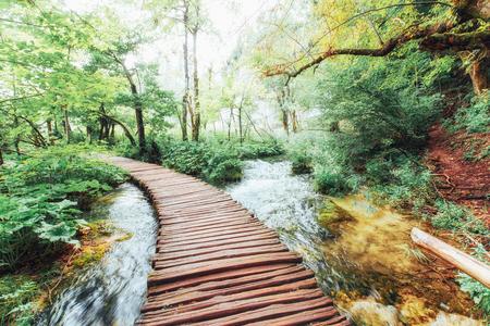 プリトヴィツェ湖群国立公園、滝に沿って木製の床の上の観光ルート