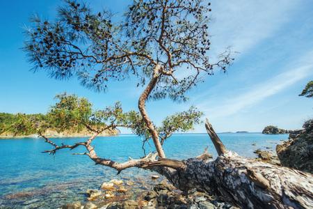 Panoramic view on sea coast. Beauty world