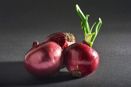 Red onions whole, isolated on a black background. Imagens