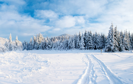 the winter road. Dramatic scene. Carpathian, Ukraine, Europe