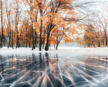 October mountain beech forest with first winter snow and blue ice and cracks on the surface of the ice. Winter. Ukraine, Europe.