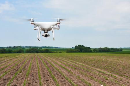 abejón helicóptero cuádruple con cámara digital de alta resolución en el campo de maíz verde Foto de archivo
