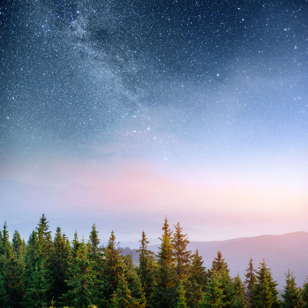 Dairy Star Trek in the woods. Dramatic and picturesque scene. Fantastic starry sky and the milky way