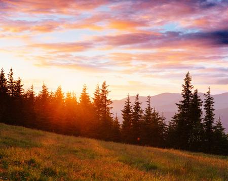 秋のシーズンでカルパティア山脈の山脈。幻想的な夕日。ウクライナ, ヨーロッパ