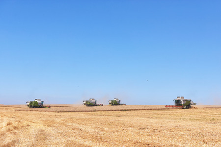 TERNOPIL - JULY 20: A few combines cutting a swath through the middle of a wheat field during harvest on July 20, 2017, in Ternopil