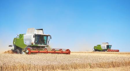 Alcune combina un'andana nel mezzo di un campo di grano durante la raccolta Archivio Fotografico - 87169085