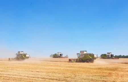 TERNOPIL - 20 luglio: alcuni combina un'andana nel mezzo di un campo di grano durante la vendemmia, il 20 luglio 2017, a Ternopil. Archivio Fotografico - 86464727
