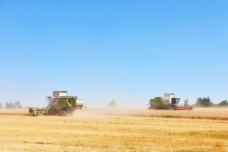 TERNOPIL - 20 luglio: alcuni combina un'andana nel mezzo di un campo di grano durante la vendemmia, il 20 luglio 2017, a Ternopil. Archivio Fotografico - 86464728