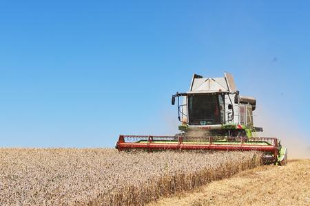 テルノピル - 7月20日:テルノピルで、2017年7月20日に小麦畑で働く近代的なコンバイン収穫機。