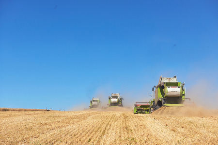 TERNOPIL - JULY 20: A few combines cutting a swath through the middle of a wheat field during harvest on July 20, 2017, in Ternopil.