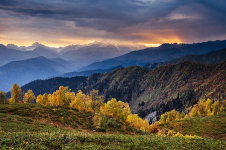 Autumn landscape and snowy mountain peaks. Birch forest in sunlight. Main Caucasian Ridge. Mountain View from Mount Ushba Mheyer, Georgia. Europe.