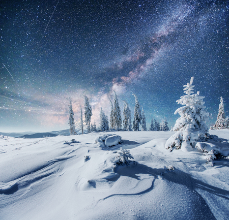 Dairy Star Trek in the winter woods. Dramatic and picturesque scene. In anticipation of the holiday. Фото со стока - 87227075