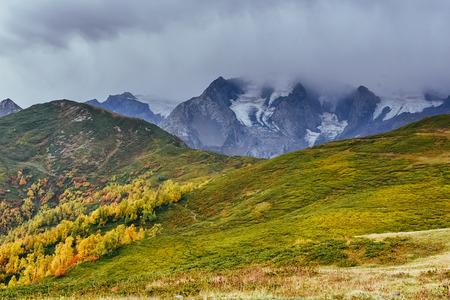Autumn landscape and snowy mountain peaks. Birch forest in sunlight. Main Caucasian Ridge. Mountain View from Mount Ushba Mheyer, Georgia