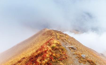 Thick fog on the mountain pass Goulet. Georgia, Svaneti. Caucasus mountains 版權商用圖片