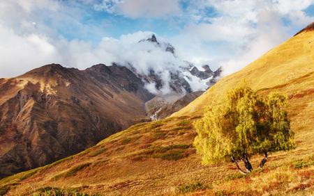 Dikke mist op de berg pas Goulet. Georgia, Svaneti. Bergen van de Kaukasus