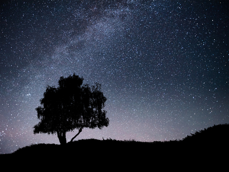 Landscape with night starry sky and silhouette of tree on the hill. Milky way with lonely tree, falling stars. Universe