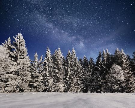 Magischer Winterschnee bedeckte Baum. Winterlandschaft. Vibrierender nächtlicher Himmel mit Sternen und Nebelfleck und Galaxie. Deep-Sky-Astrofoto. Standard-Bild - 91277845