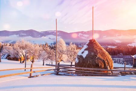 Amazing mountains in the morning sunlight. Small cozy village. Carpathian, Ukraine, Europe. Beauty world. Happy New Year.