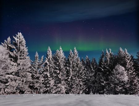 Magischer Winterschnee bedeckte Baum. Winterlandschaft. Vibrierender nächtlicher Himmel mit Sternen und Nordlichtern. Deep Sky Astrofoto. Standard-Bild - 91277116