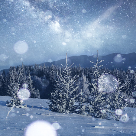 Mysterious winter landscape majestic mountains in winter. Magical winter snow covered tree. Photo greeting card. Bokeh light effect, soft filter. Carpathian. Ukraine. Europe. Stock Photo