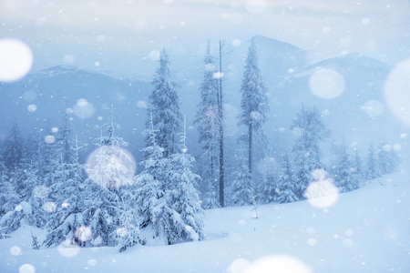 Mysterious winter landscape majestic mountains in winter. Magical winter snow covered tree. Photo greeting card. Bokeh light effect, soft filter. Carpathian. Ukraine. Europe. Stockfoto